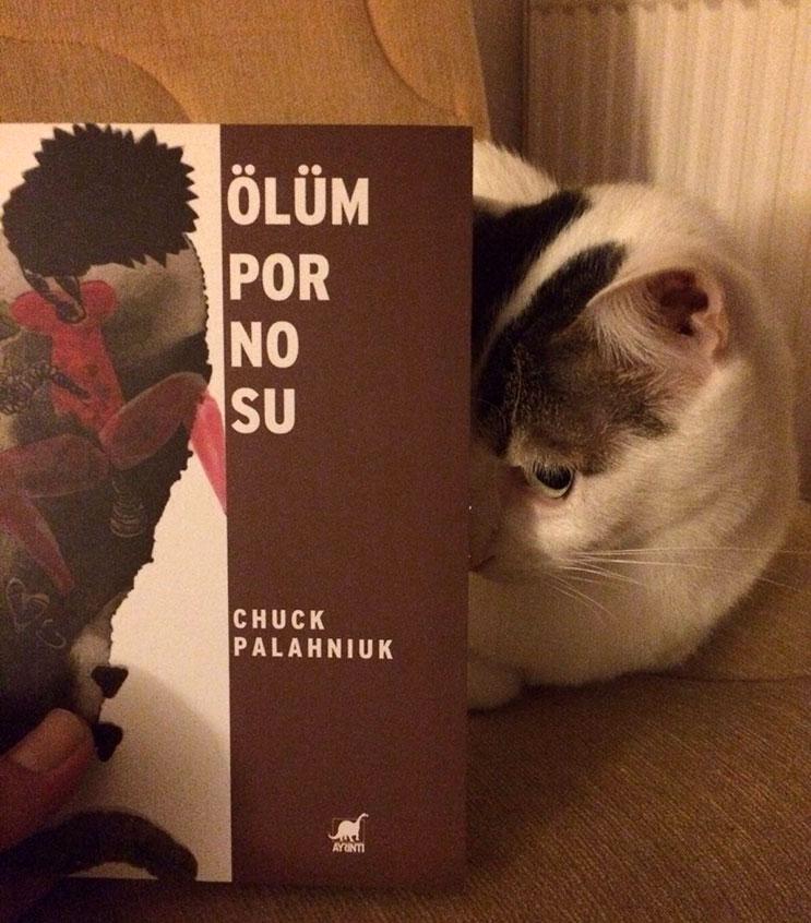 Chuck Palahniuk Ölüm Pornosu